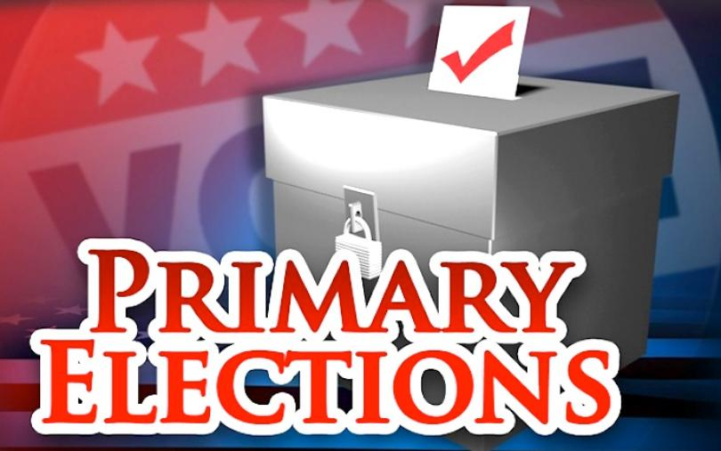 Image result for primary day