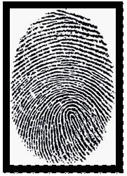 A stock image of a human fingerprint in black and white